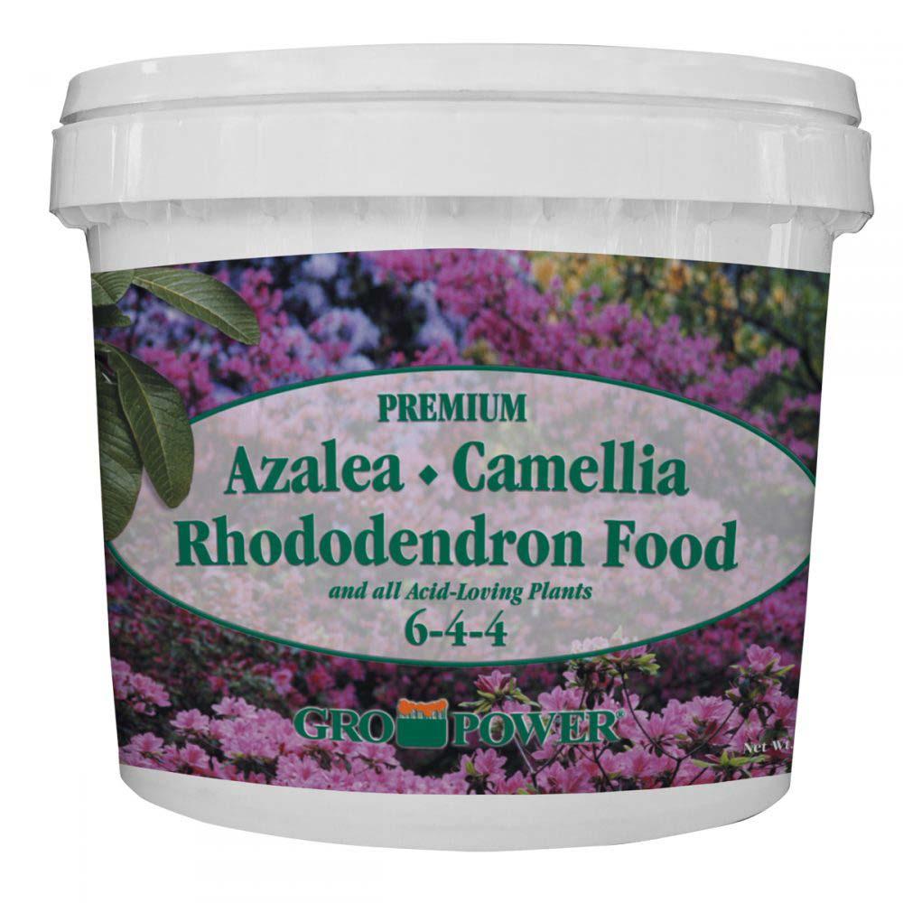 Azalea, Camellia & Rhododendron Plant Food Fertilizer